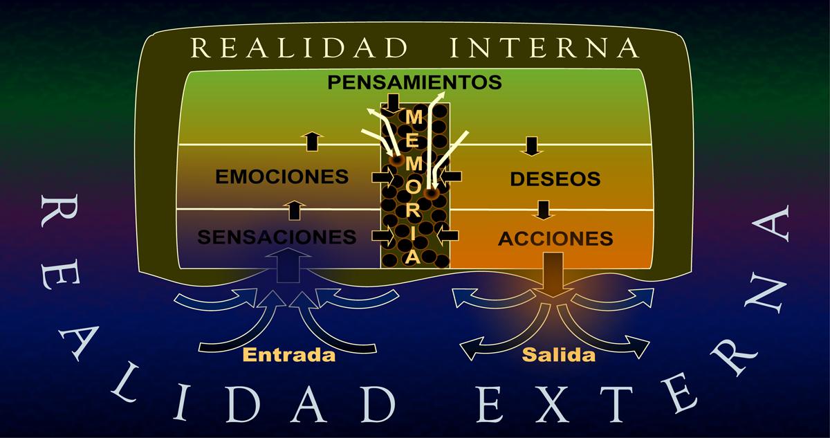 Realidad interna y externa